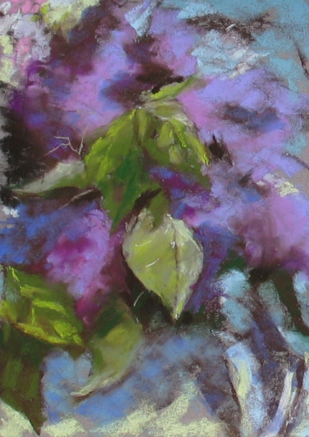 quick study of lilacs (about 1/2 hour), pastel on Wallis paper