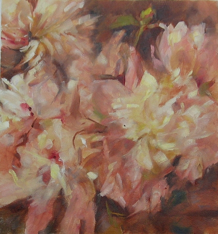 study of peonies, oil on canvas, 10x10