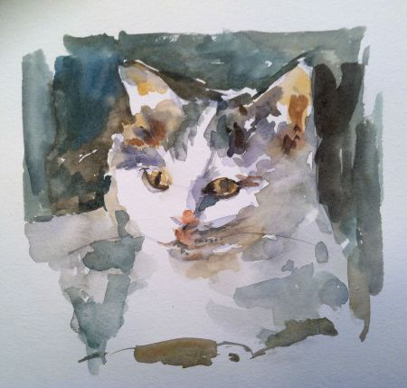 A friend's cat, Diva, watercolor 8x8 in.