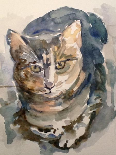 Jake, watercolor, 8x8 in.