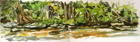 Stream Side, Ken Lockwood Gorge, Highbridge, NJ - watercolor sketch