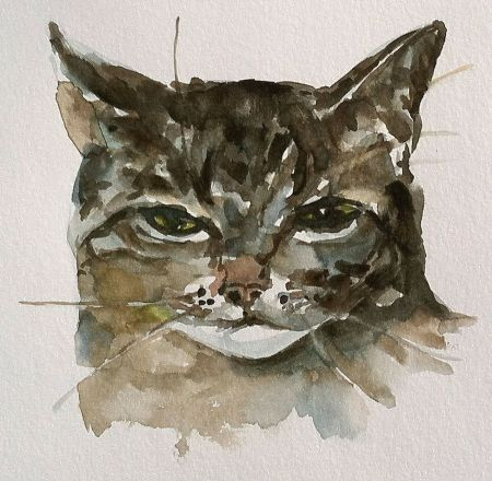 """Jake"" watercolor, about 5x5 in."