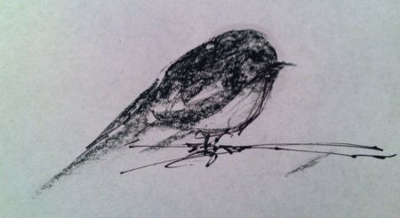 Bird in about 5 strokes, charcoal and Sharpie, 1 minute sketch from direct observation