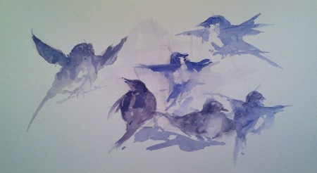 Gestural study of birds, from life and memory, watercolor